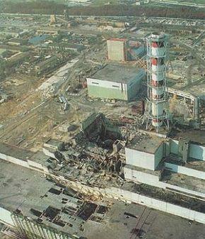 Чернобыль и Фукусима: радиация нанесла серьезный вред дикойприроде