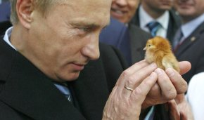 Год экологии 2017: среди поручений Путина амнистия дляугольщиков