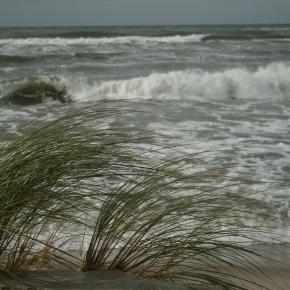 На климатической передовой — новый фильм «Экозащиты»