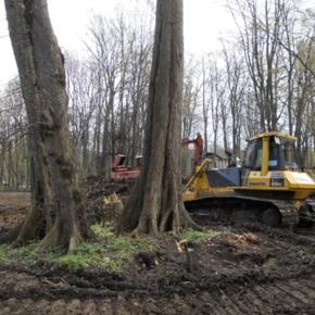 «Экозащита!» призывает губернатора Алиханова спасти ценныйпарк